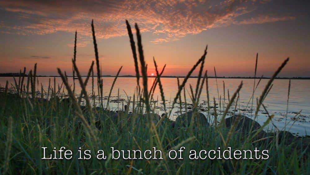 Life is a bunch of accidents that happen to you and... #forwardsteps http://www.forwardstepsblog.com/2015/11/life-is-a-bunch-of-accidents