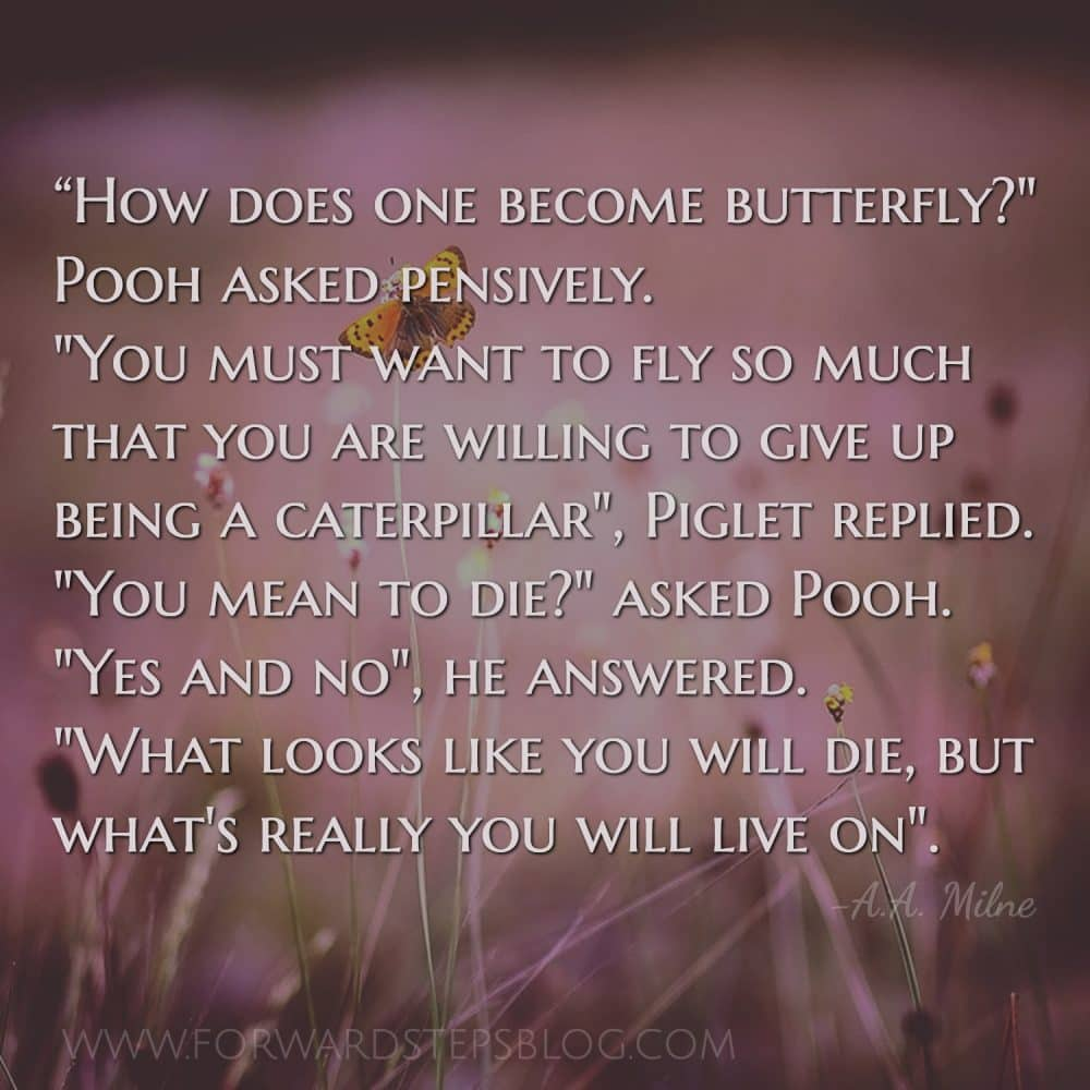 The struggling butterfly story has been around a long time, yet the lesson is relevant #forwardsteps http://www.forwardstepsblog.com/struggling-butterfly
